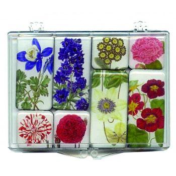 Magnetset blommor