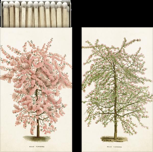 Tändsticksask Rosa Blomträd