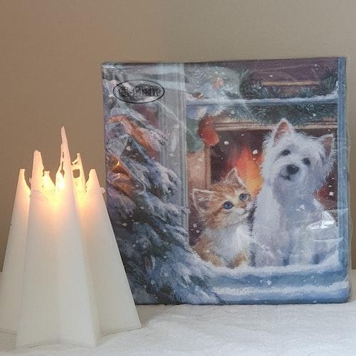 Julservett Hund & Katt