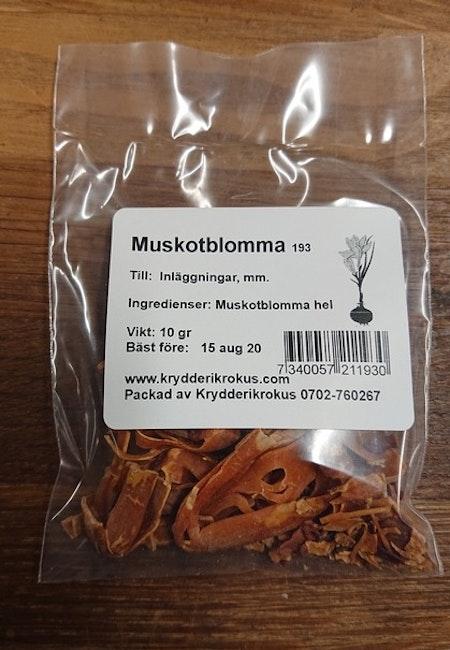 Muskotblomma