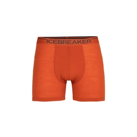 Icebreaker Kalsonger Anatomica Boxer Roote