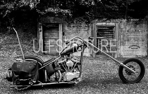 Harley Davidson Digital1