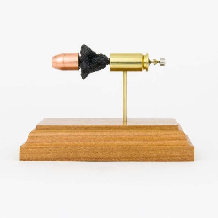 40 S&W FMJ Bullet