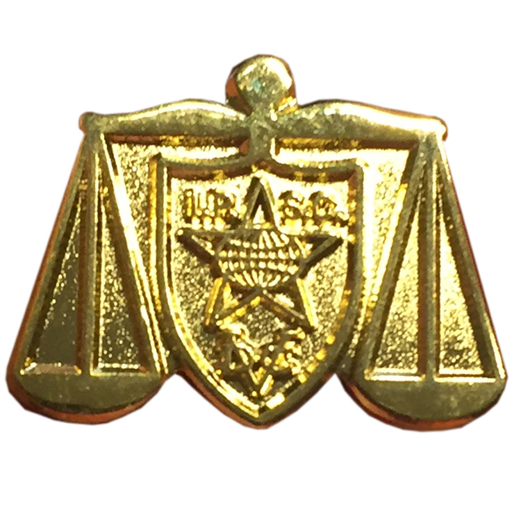 Range Officer Gold Pin