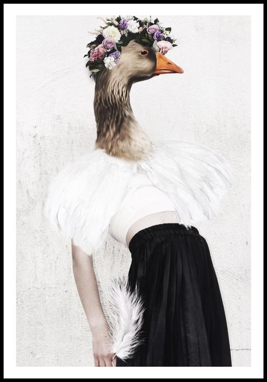 """""""Birdy bird"""""""