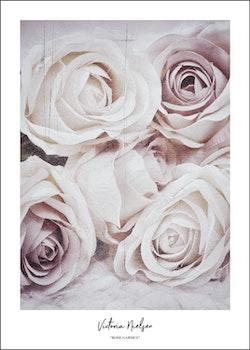 """Rose Garden"""