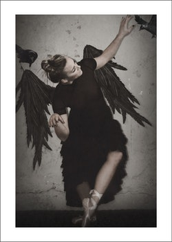 """Dancing for crows"""