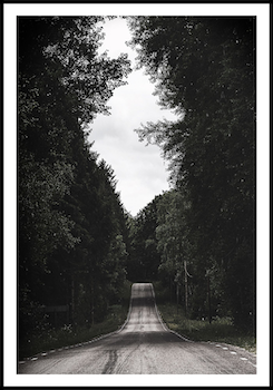 """""""Forest road"""""""