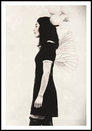 """""""Fate of butterfly"""""""
