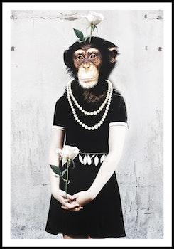 """Monkey business"""