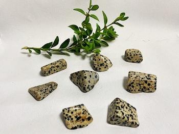 Dalmatine jaspis (trumlade)