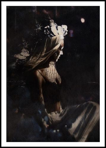 """Flowers in darkness"""