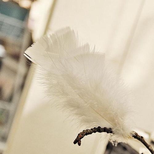 Påskfjädrar vita 5-pack