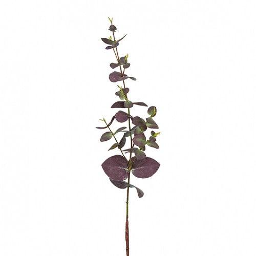 Sia - Eukalyptus 73 cm