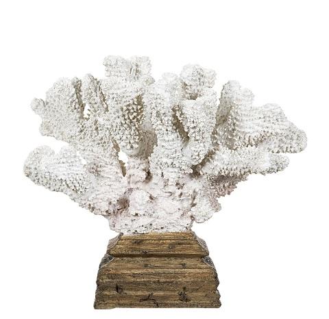 Korall på platta- inredningsdetalj