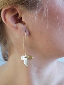 Pold Design Abbesses Orchid Örhänge Guld