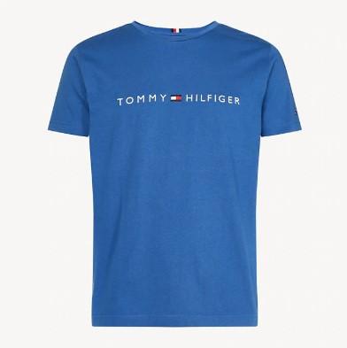 TOMMY HILFIGER - Core Tommy Logo Tee Blå