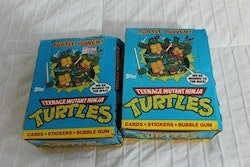 1989 Teenage Mutant Ninja Turtles RETRO BOX