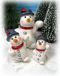 Frostis med snöboll
