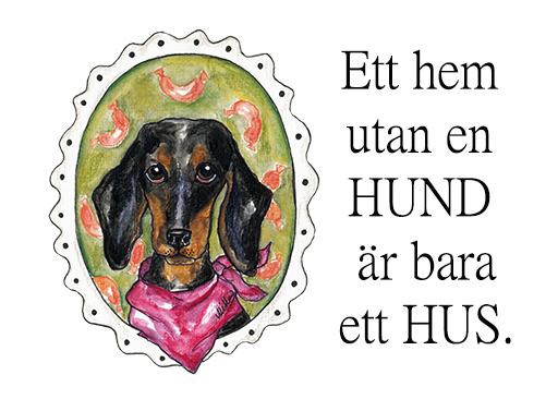 Vykort, Hundar med citat