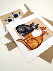 Kort, Katter 2 olika motiv