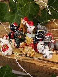 Julkatter, små och söta