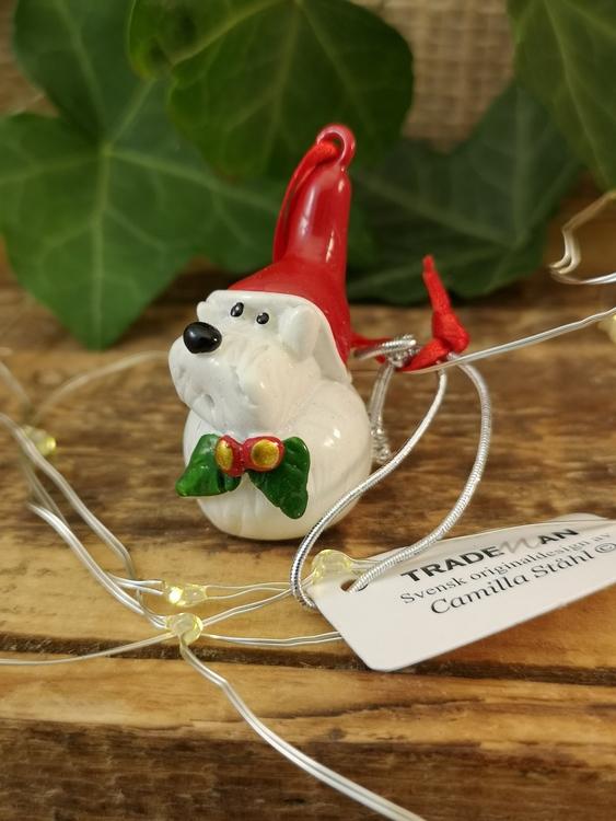 hund i tomteluva till julgranen