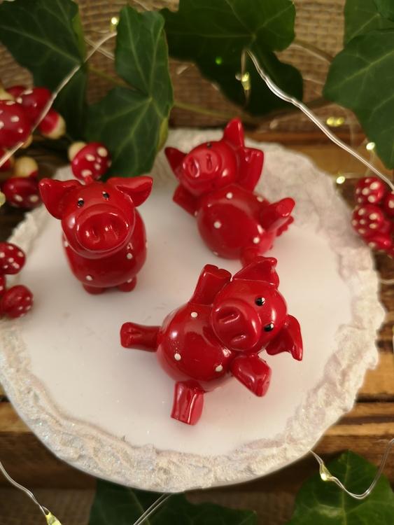 snöplatta med glada grisar
