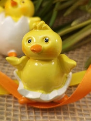 Kycklingar i ägg, stora