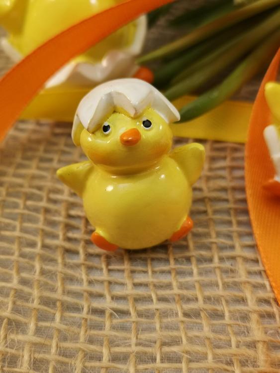 Kycklingar i ägg, små