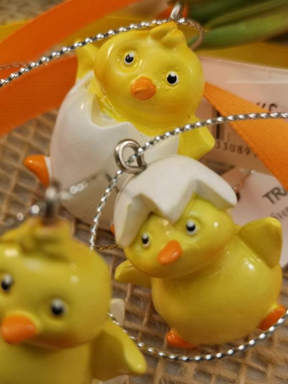 Kycklingar i ägg, hängande