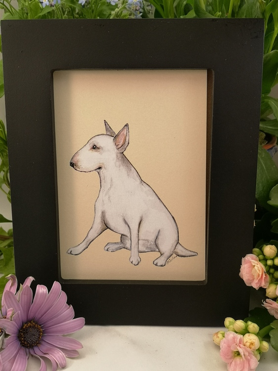 Tavla, vit hund