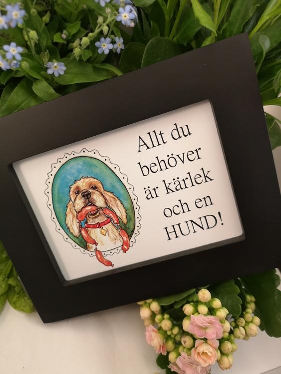 Tavla, hund med korvar
