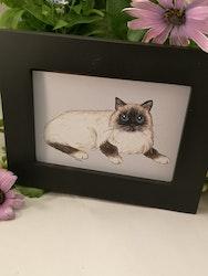 Tavla, liggande katt