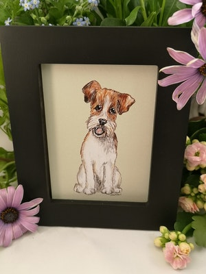 Tavla, sittande hund