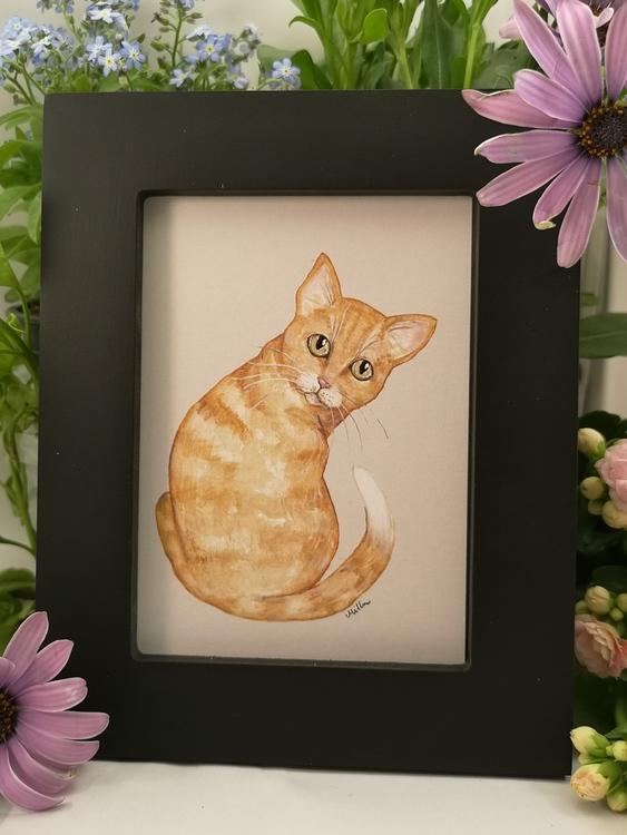 Tavla, gul katt