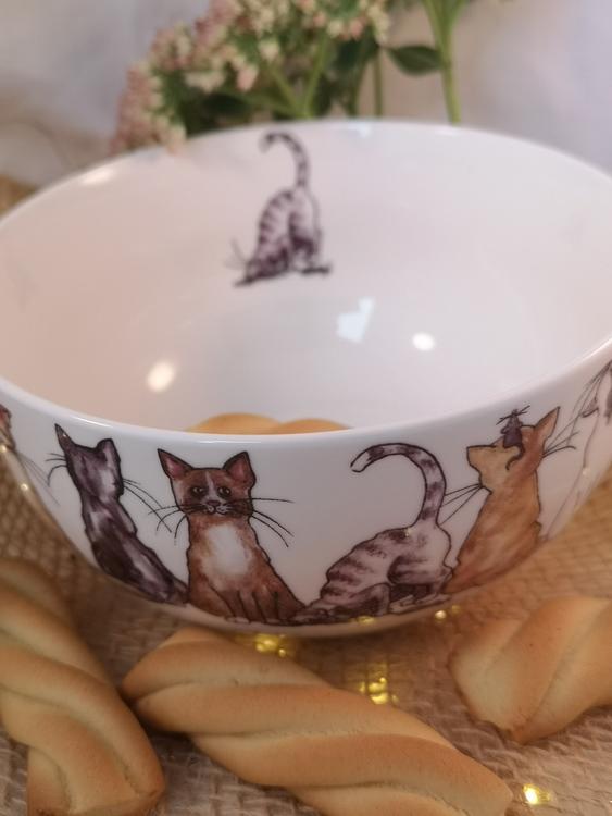 Skål med katter i olika färger, grå katt på insidan av skålen.