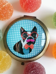 Fickspegel, Bostonterrier