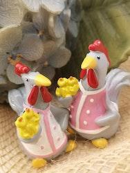 Tupp med kycklingar