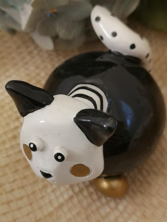 Katt i svart, vitt och guld