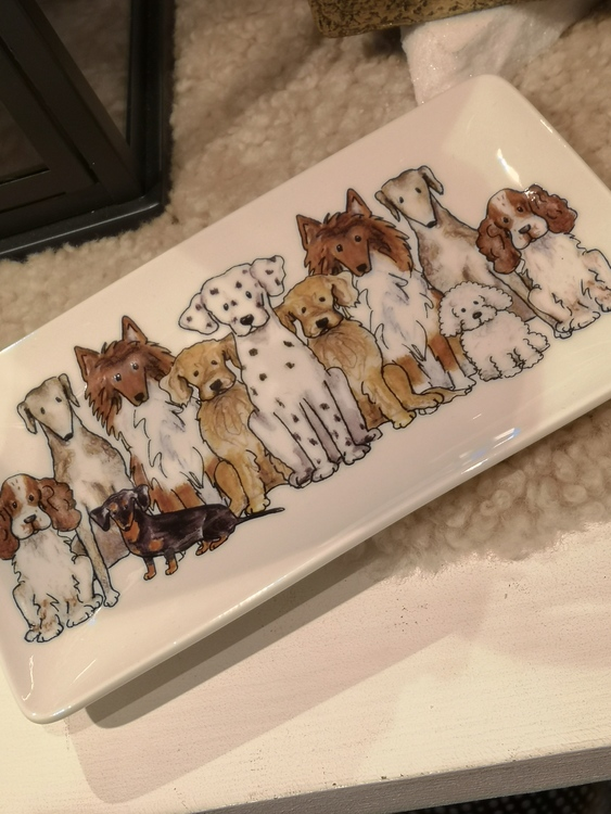 Assietter med hundmotiv. Däribland dalmatiner, collie, cocker spaniel och bichon frisé.