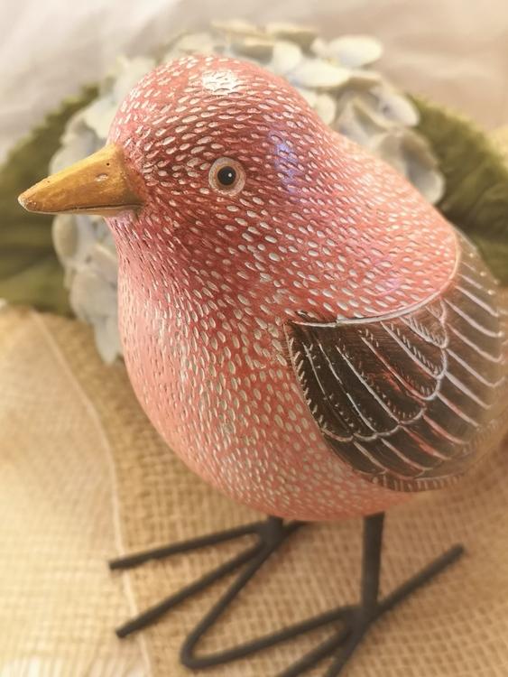 Fågel, rosaröd