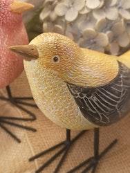 Fågel, gul