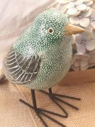 Fågel, grön