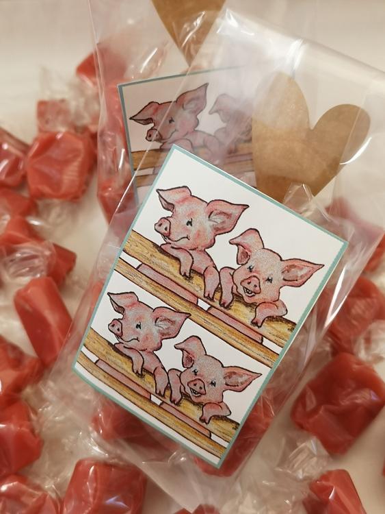 Kolapåse  med grismotiv