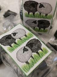 Kolapåse med fårmotiv