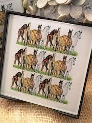 Glasunderlägg, hästar