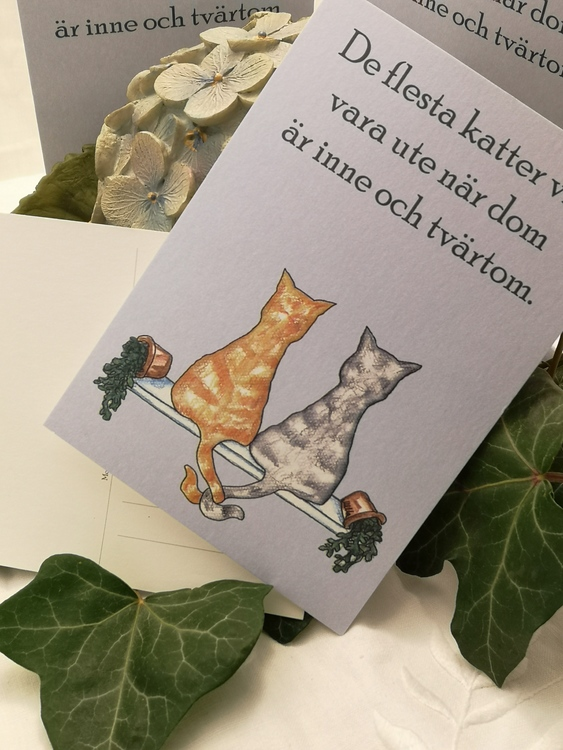 Två katter på vykort på blå botten