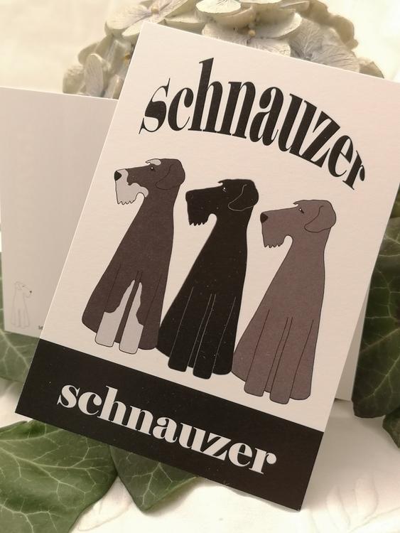 vykort, schnauzer