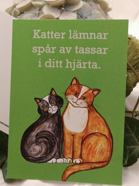 två katter på grön bakgrund, vykort